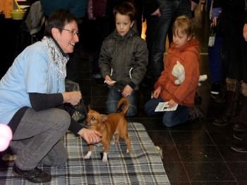 Hund und Heimtiermesse Siegen 2013 (21)