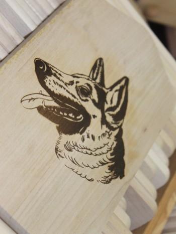 Hund und Heimtiermesse Siegen 2013 (25)