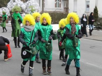 Veilchendienstagszug Grevenbrück (15)