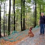 """<b> Förster Roland Wiese hat seine """"Lebensaufgabe"""" im Stadtwald gefunden</b>"""