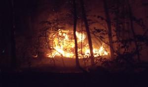 Feuerwehreinsatz verhindert Waldbrand