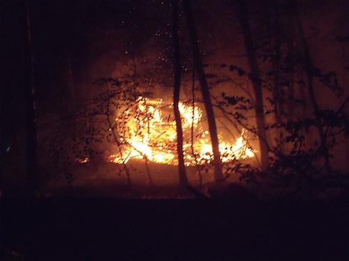 Photo of Feuerwehreinsatz verhindert Waldbrand
