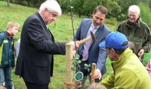 Wiederstein: Baum des Jahres gepflanzt