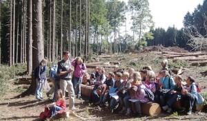 Landrätin gibt Startschuss für 13. Waldjugendspiele