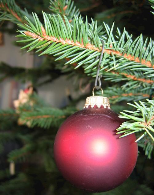 Photo of Iserlohn: Weihnachtsbaumabfuhr ab Mittwoch