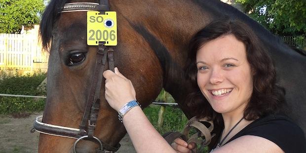 Photo of Pferde-Nummernschild trägt 2014 Blau