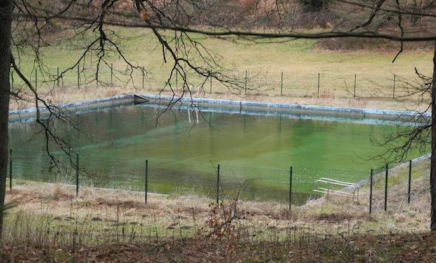 Photo of Würgendorf: Erlenweiher soll erhalten bleiben