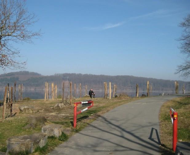 Die neuen Stämmlinge am Randweg des Möhnesees sollen ungestört wachsen können (Foto: Ruhrverband).