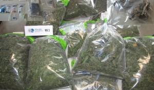 Erwitte: Drogenfahnder der Polizei wieder erfolgreich