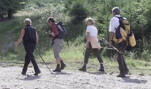 Erlebnishöhepunkte beim Wanderfestival