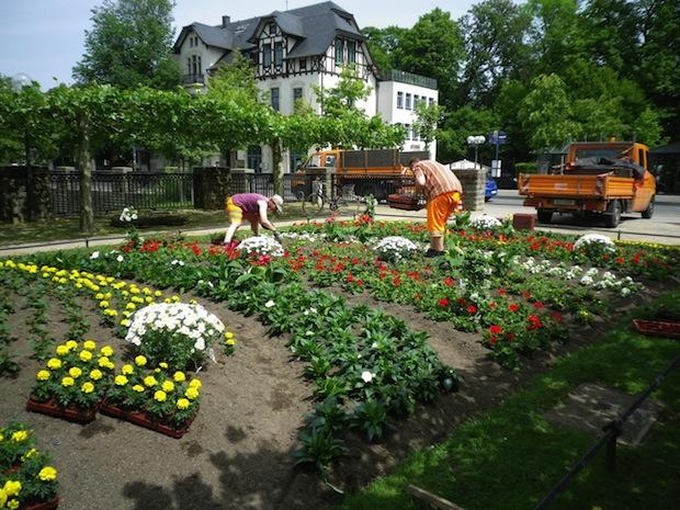 Photo of Über 7.000 Sommerblumen verschönern das Stadtbild