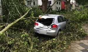 Arnsberger Feuerwehr hilft bei Beseitigung der Sturmfolgen in NRW