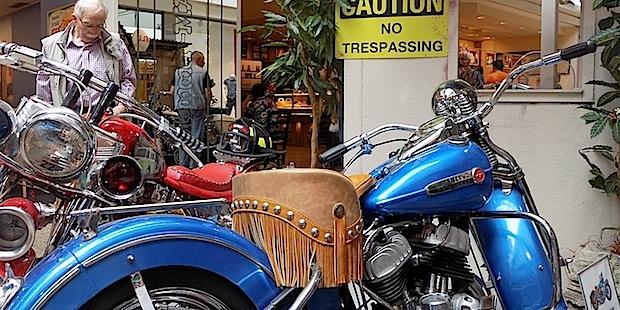 Photo of Mit dem Stern-Center und Harley Davidson in die Freiheit