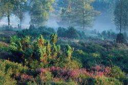 <b>AktivZeit Winterberg bildet Landschafts-Coaches aus</b>