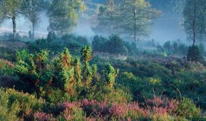 AktivZeit Winterberg bildet Landschafts-Coaches aus