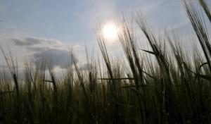 Neue Erlebnis-Serie – Sonnenstrahlen auf Südwestfalen