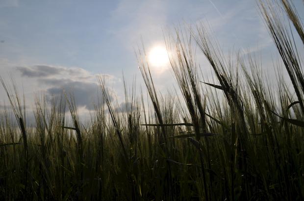 Photo of Neue Erlebnis-Serie – Sonnenstrahlen auf Südwestfalen