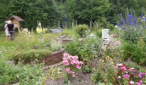 """Zweiter """"Tag der offenen Gärten"""" wieder ein Besuchermagnet"""