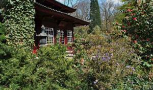 """Neues Projekt: """"Gärtnern macht glücklich"""""""