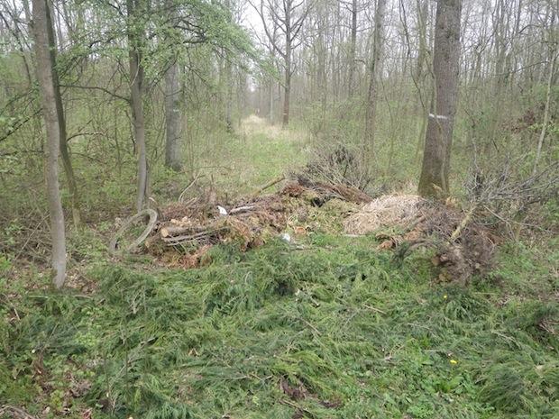 Photo of Illegale Müllablagerung im Eringerfelder Wald