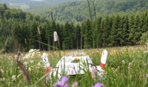 Landschaftliche Filetstücke und Leckereien