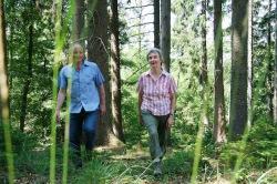<b>Wasser, Wald und Wild: Wandertour zeigt den Möhnesee im herbstlichen Kleid</b>