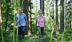 Wasser, Wald und Wild: Wandertour zeigt den Möhnesee im herbstlichen Kleid