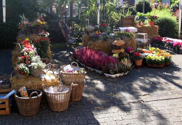 Herbstliches Ambiente versprüht der Wilnsdorfer Bauern- und Naturmarkt (Foto: Gemeinde Wilnsdorf).