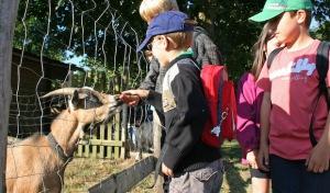 Wilnsdorf: Ferienbetreuung in Ganztagsgrundschule