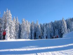 <b>Topfit durch den Winter: AktivZeit motiviert mit Spaß zur Bewegung</b>