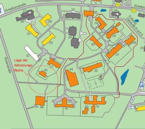 Lageplan zur Abholzungsmaßnahme - Grafik: LWL