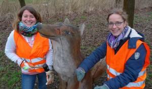 Walderlebnis in den Osterferien: Anmeldung erstmalig im Onlineverfahren