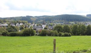 Drolshagen: Hützemerter säubern ihr Dorf