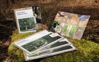 Regeln für den Waldbesuch im Endlos-Format