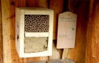 NaturRanger und Bauhof bauen am XXL-Insektenhotel im Hennenohl