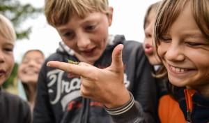 """Deutschlands erste """"Kinder-Klimakonferenz"""" kommt nach Südwestfalen"""