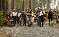 Maibaum, Feuer und Rocksound: Winterberg wandert in den Mai