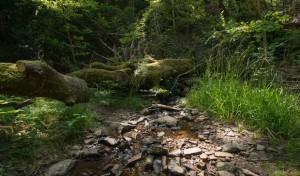 Wassernutzung in der Vergangenheit im Buchhellertal