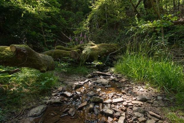 Photo of Wassernutzung in der Vergangenheit im Buchhellertal