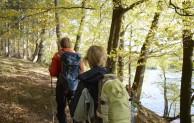 Wasser, Wald und Wasser und beste Sicht vom neuen Aussichtsturm