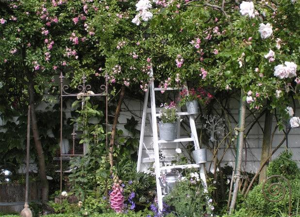 15 Gärten haben am kommenden Wochenende geöffnet und warten auf Gäste (Foto: wfg Kreis Soest GmbH).