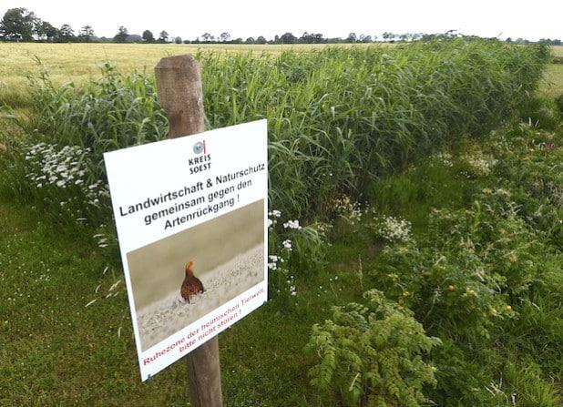 In Erwitte-Schallern haben die heimische Landwirtschaft und das Sachgebiet Natur- und Landschaftsschutz der Kreisverwaltung Soest das erste Hinweisschild zum Artenschutz in der Feldflur aufgestellt (Foto: Thomas Weinstock/Kreis Soest).