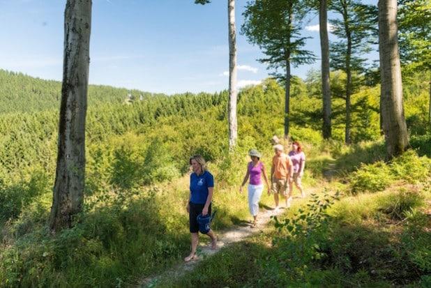 Zum schönsten Wanderweg in NRW gekürt: Der Olsberger Kneippweg (Foto: Olsberg-Touristik)