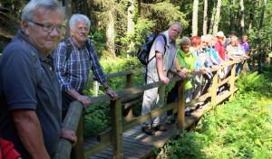 SGV Arnsberg: Achtzehn Wanderer begeistert von Hochsauerlandtour