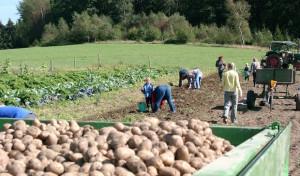 Neunkirchener Bauern- und Ökomarkt findet wie gewohnt statt