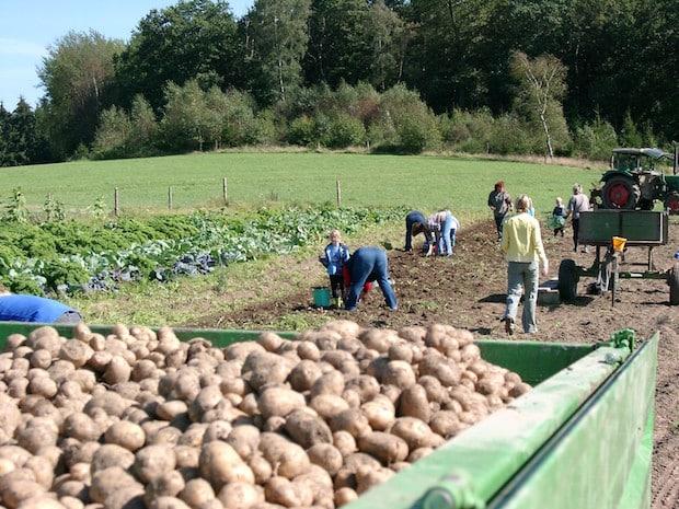 Photo of Neunkirchener Bauern- und Ökomarkt findet wie gewohnt statt
