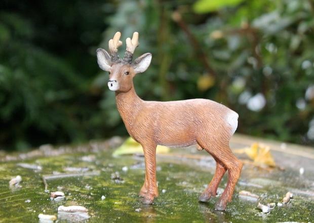 Photo of Stellvertretender Wildschadenschätzer gesucht