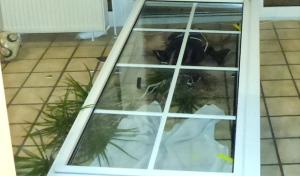 Soest: Einbruch in Einfamilienhaus
