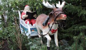 Weihnachtskonzert der Musikschule Drolshagen im Clemenshaus