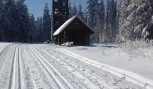 """Den Schnee """"lesen"""": Ein Heer von Helfern im Einsatz für wunderbare Loipen"""